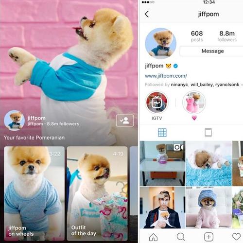O Instagram está ganhando uma nova plataforma dedicada a vídeos, numa tentativa de bater de frente com o YouTube.